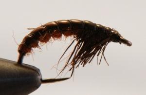 Czechnymph - brown